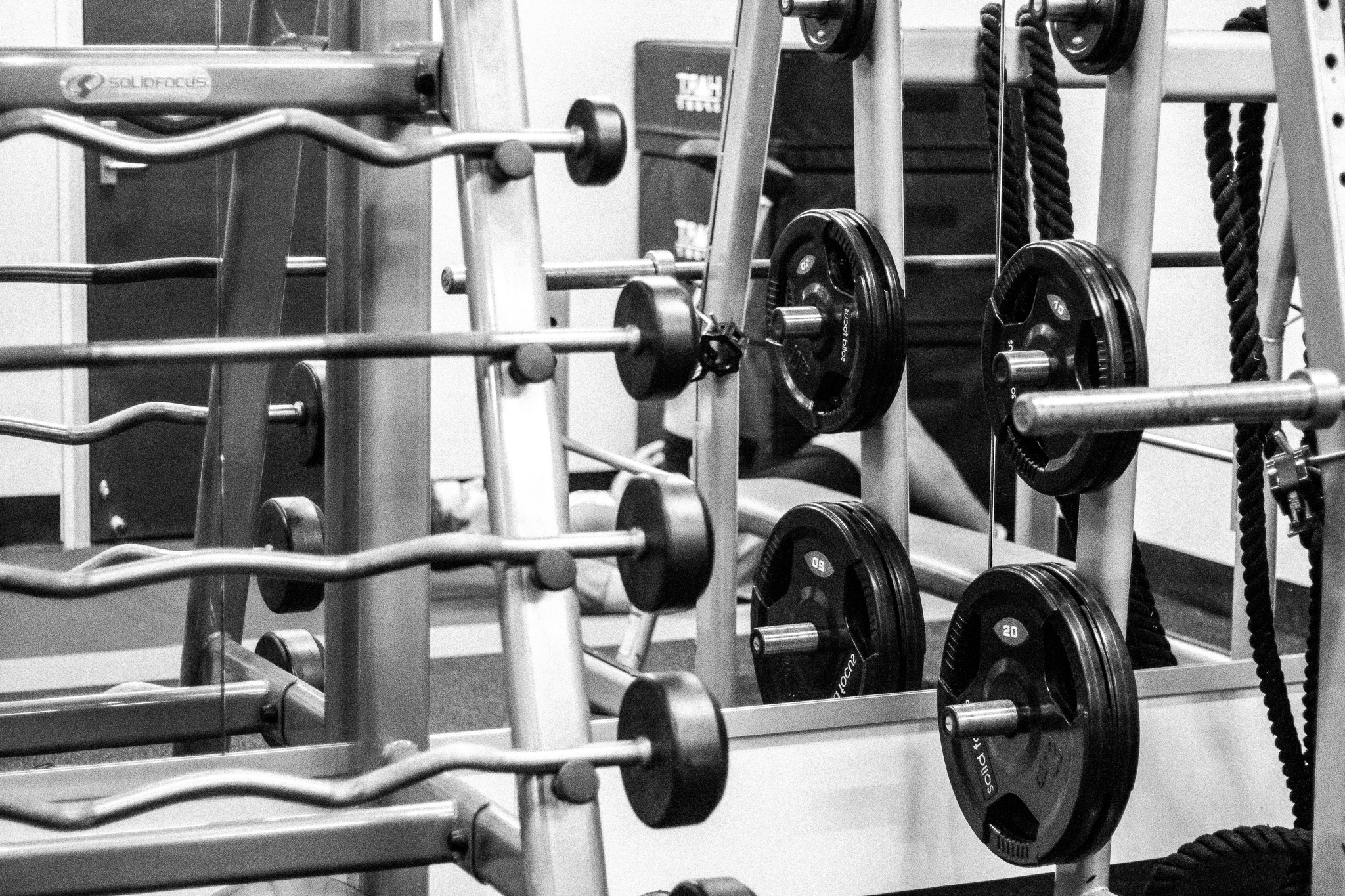 WHAT YOUR GYM TRAINING SHOULD LOOK LIKE